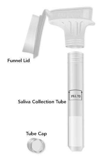 Saliva Kit